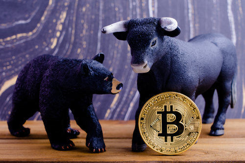 Bull vs Bear Bitcoin Market